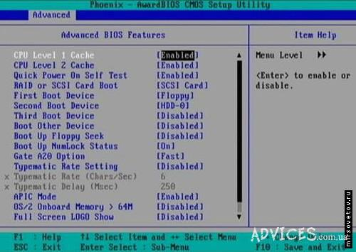 Установочная Программа Windows Xp